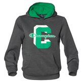 Champion HOODED JR SWEAT GRAPHITMEL