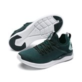 Puma IGNITE W FLASH EVOKNIT GRN